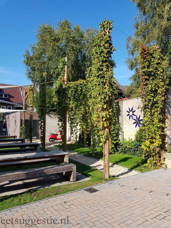 Gulpener Bierbrouwerij hopplant